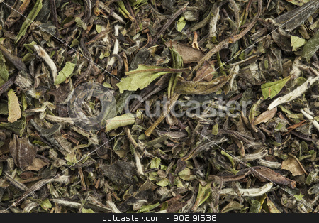 organic white tea stock photo, background texture of organic white tea by Marek Uliasz