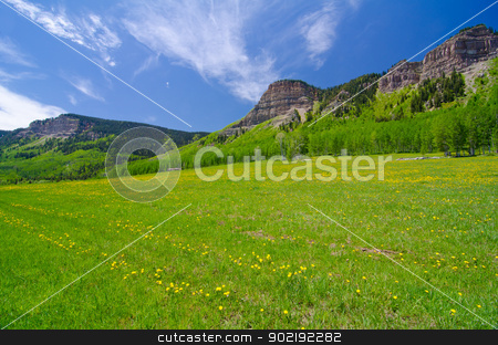 Pasture in the San Juan Mountains in Colorado stock photo, Pasture in the San Juan Mountains in Colorado by Robert