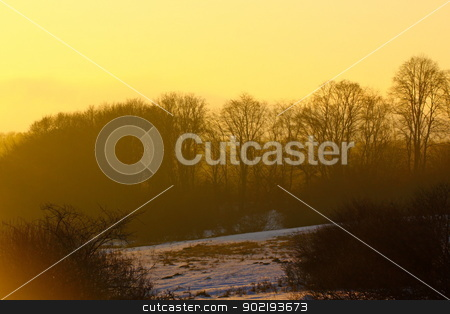 morning in the field stock photo, beautiful colors of sunrise over the forest in winter by coroiu octavian