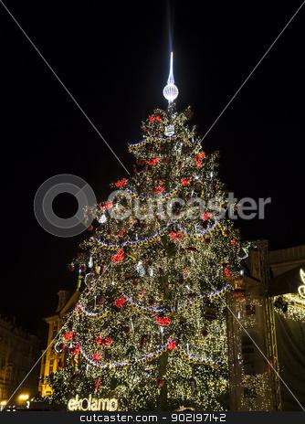 Christmas Tree stock photo, Christmas Tree in Prague Old Town  by Ingvar Bjork