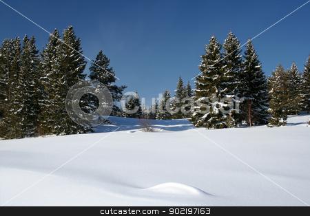 Beautiful winter landscape stock photo, Beautiful winter landscape in Sweden  by Ingvar Bjork