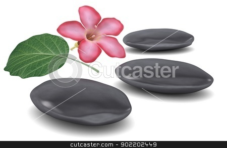 Stones, flower and leaf stock photo, Stones, flower and leaf. Isolated render on a white background by cherezoff