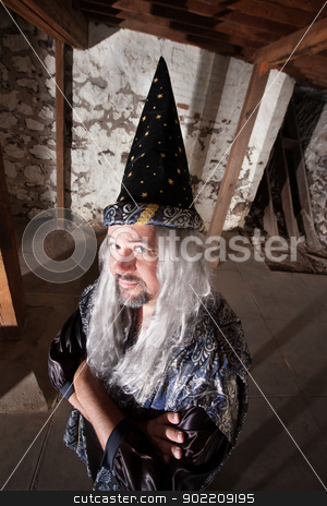 Clever Wizard stock photo, Clever man dressed as a wizard with long hair by Scott Griessel