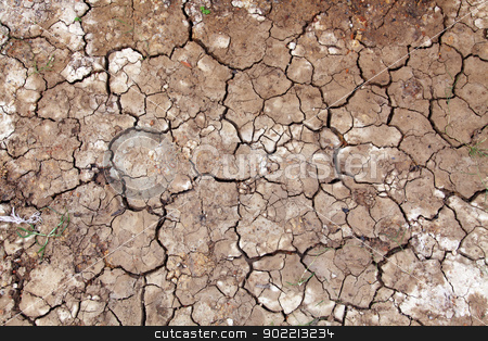 Wet cracked ground filling the frame as background stock photo, Wet cracked ground filling the frame as background by Vichaya Kiatying-Angsulee