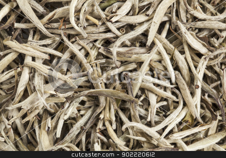 silver needle white tea stock photo, background texture of organic silver needle white tea by Marek Uliasz