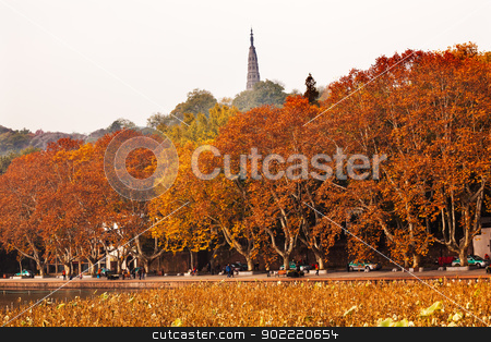 Ancient Baochu Pagoda Autumn West Lake Hangzhou Zhejiang China stock photo, Ancient Baochu Pagoda Autumn Orange Fall Leaves Old Lotus Leaves West Lake Hangzhou Zhejiang China .  Pagoda was constructed in 963AD by William Perry
