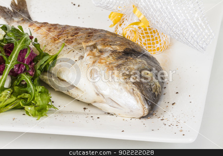Dorada fish with salad on the white plate. Studio shot stock photo, Dorada fish with salad on the white plate. Studio shot by Andrey Starostin
