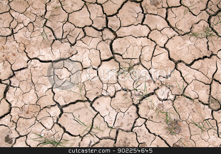Dry cracked ground filling the frame as background stock photo, Dry cracked ground filling the frame as background by Vichaya Kiatying-Angsulee