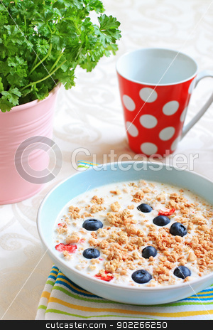 Healthy musil vegetarian breakfast stock photo, Healthy musil vegetarian breakfast close up  by Juliet Photography