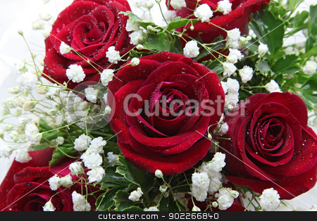 rose closeup stock photo, closeup of rose bouquet using in wedding or any greeting ceremony by Vichaya Kiatying-Angsulee