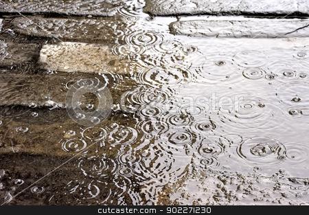 Rain stock photo, Heavy rain flooded the road by lillo