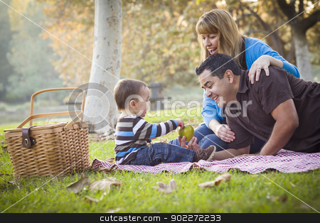 Happy Mixed Race Ethnic Family Having Picnic In The Park stock photo, Happy Young Mixed Race Ethnic Family Having a Picnic In The Park. by Andy Dean