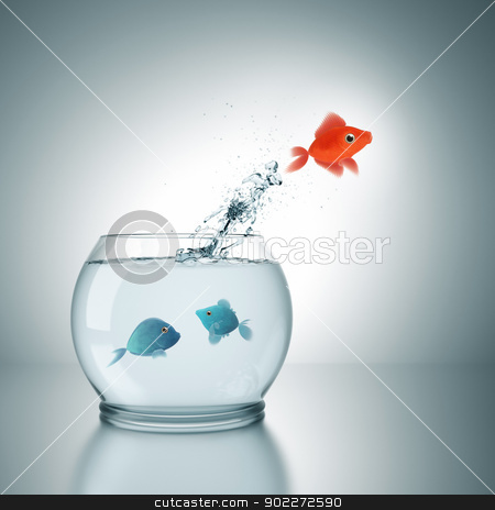jumping stock photo, A fishbowl with a red fish jumping out of the water by Markus Gann