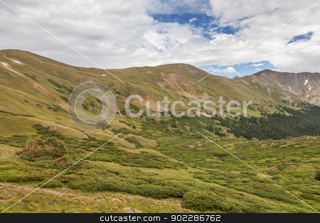 Rocky Mountain alpine zone  stock photo, summer green alpine zone meadows of the Rocky Mountains at Loveland Pass, Colorado by Marek Uliasz
