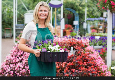 Woman holding a flower box stock photo, Woman holding a flower box while smiling by Wavebreak Media