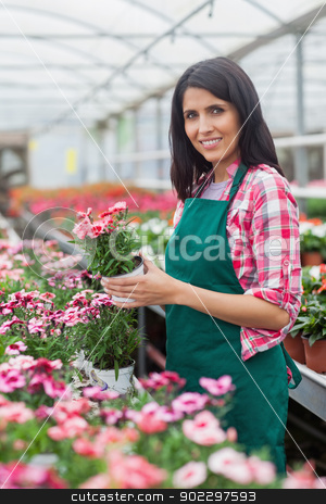 Worker holding a flower and smiling stock photo, Woman holding a flower and smiling while standing in greenhouse by Wavebreak Media