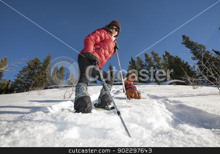 winter hiker and her dog stock photo, woman hiking in the winter with her dog by Barna Tanko