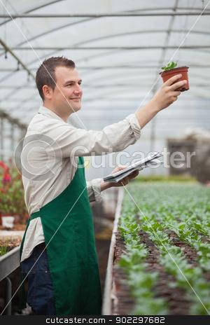 Gardener looking happily at seedling while taking notes stock photo, Gardener lookinghappily at seedling while taking notes in greenhouse nursery by Wavebreak Media
