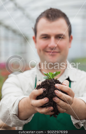 Man holding a plant with soil in his hands stock photo, Man holding a plant with soil in his hands in greenhouse by Wavebreak Media