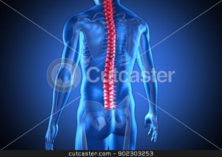Digital blue human with highlighted red spine stock photo, Digital blue human with highlighted red spine on dark blue background by Wavebreak Media
