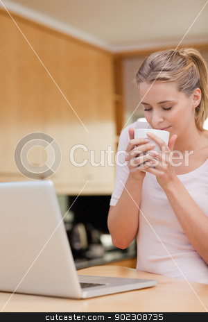 Portrait of a young woman using a laptop while drinking tea stock photo, Portrait of a young woman using a laptop while drinking tea in her kitchen by Wavebreak Media