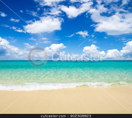 sea stock photo, beautiful beach and tropical sea by Vitaliy Pakhnyushchyy