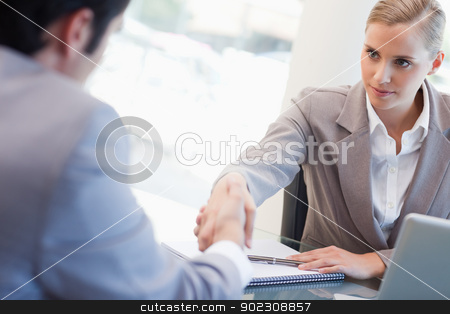 Serious manager interviewing a male applicant stock photo, Serious manager interviewing a male applicant in her office by Wavebreak Media