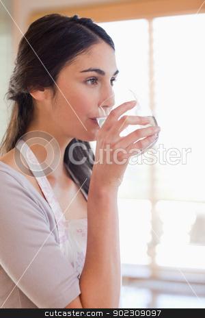Portrait of a woman drinking water stock photo, Portrait of a woman drinking water in her kitchen by Wavebreak Media