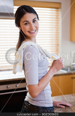 Portrait of a housewife posing stock photo, Portrait of a housewife posing in her kitchen by Wavebreak Media