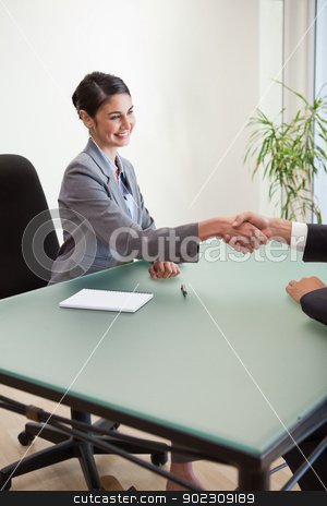 Portrait of a manager shaking the hand of a customer stock photo, Portrait of a manager shaking the hand of a customer in her office by Wavebreak Media