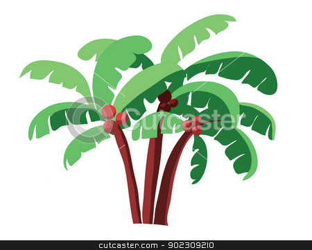coconut tree stock vector clipart, coconut tree isolated on white by Vichaya Kiatying-Angsulee
