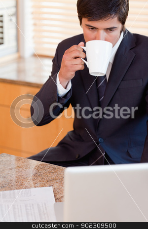 Portrait of a businessman drinking coffee while using a laptop stock photo, Portrait of a businessman drinking coffee while using a laptop in his kitchen by Wavebreak Media