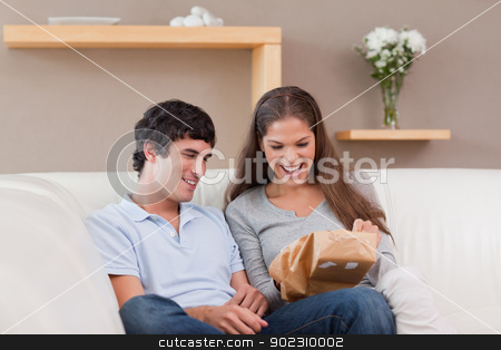 Couple on the couch with parcel stock photo, Young couple on the couch with parcel by Wavebreak Media