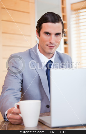 Businessman with laptop and tea stock photo, Young businessman with laptop and tea by Wavebreak Media