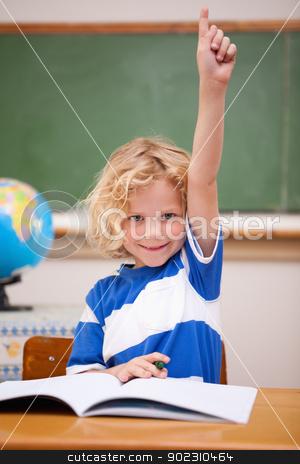 Portrait of a schoolboy raising his hand stock photo, Portrait of a schoolboy raising his hand in a classroom by Wavebreak Media