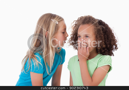 Girl whispering a secret to her friend stock photo, Girl whispering a secret to her friend against a white background by Wavebreak Media