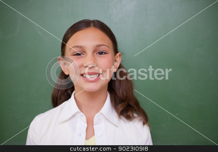 Cute schoolgirl standing in front of a blackboard stock photo, Cute schoolgirl standing in front of a blackboard in a classroom by Wavebreak Media