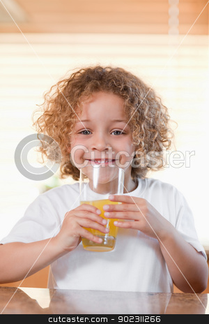 Happy girl drinking orange juice in the kitchen stock photo, Happy young girl drinking orange juice in the kitchen by Wavebreak Media