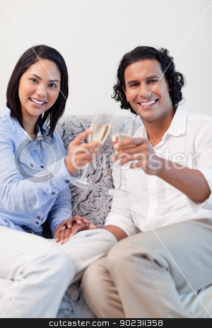 Happy couple drinking sparkling wine on the sofa stock photo, Happy young couple drinking sparkling wine on the sofa by Wavebreak Media