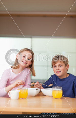 Portrait of young children having breakfast stock photo, Portrait of young children having breakfast in a kitchen by Wavebreak Media