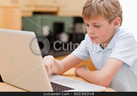 Focused boy using a laptop stock photo, Focused boy using a laptop in a kitchen by Wavebreak Media