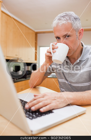 Portrait of a man using a laptop while drinking tea stock photo, Portrait of a man using a laptop while drinking tea in a kitchen by Wavebreak Media