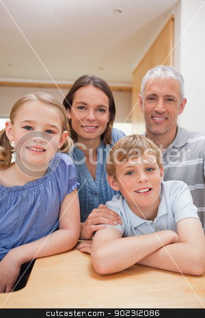 Portrait of a family posing in a kitchen stock photo, Portrait of a family posing in a kitchen while looking at the camera by Wavebreak Media