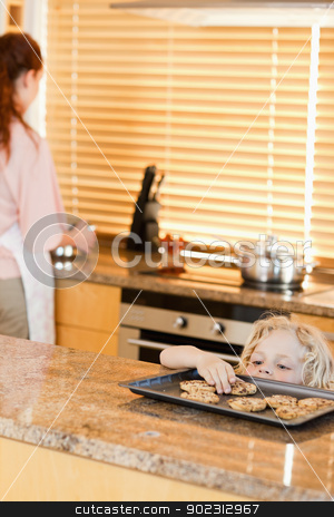 Sneaky boy stealing cookies stock photo, Sneaky boy stealing cookies from the kitchen counter by Wavebreak Media