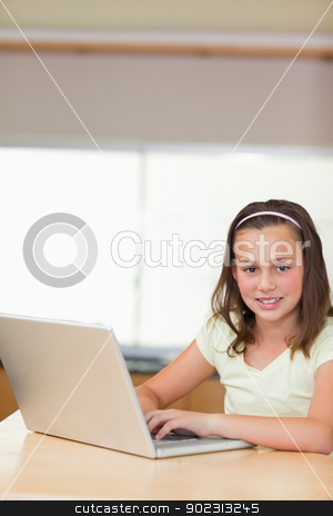 Girl using laptop in the kitchen stock photo, Smiling girl using laptop in the kitchen by Wavebreak Media