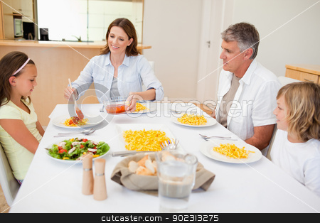 Mother serving dinner to family stock photo, Mother serving dinner to her family by Wavebreak Media