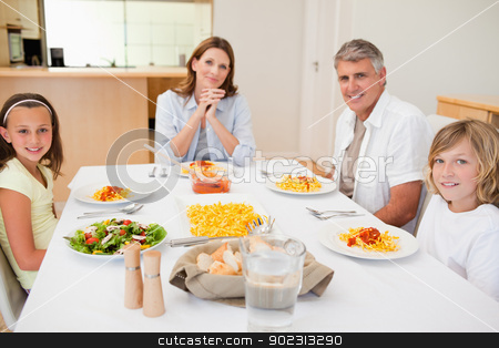 Family about to have dinner stock photo, Family about to have dinner together by Wavebreak Media