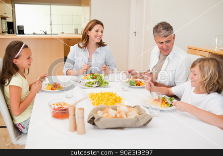Family having a conversation while dinner stock photo, Family having a conversation together while dinner by Wavebreak Media