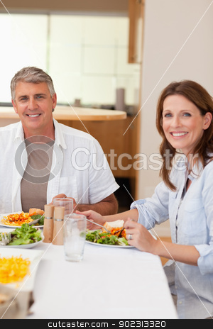 Happy couple eating dinner stock photo, Happy couple eating dinner together by Wavebreak Media