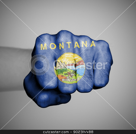 United states, fist with the flag Montana stock photo, United states, fist with the flag of a state, Montana by michaklootwijk